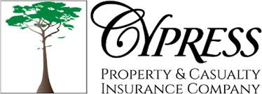 Cypress Insurance Payment Link